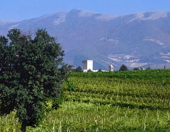 Residenze Sagrantino 2 pers, een van onze vakantiehuizen in Umbrie